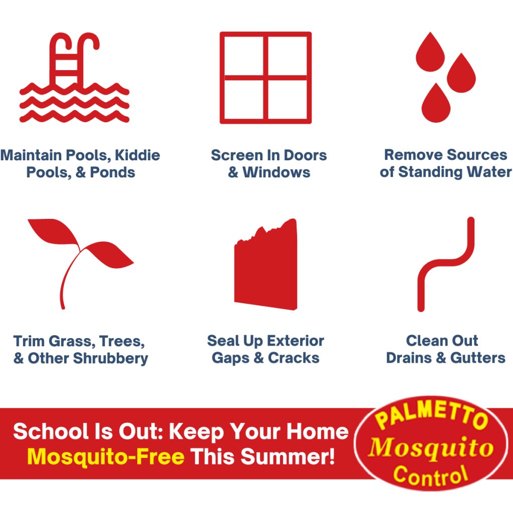 School is out: Keep your home mosquito free with best mosquito control practices
